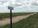 2875 Obdulio Point - Photo 1