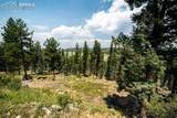 66 Rainbow Ridge Road - Photo 30