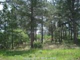 656 Silver Oak Grove - Photo 1