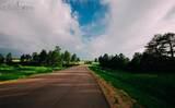 3303 Blue Heron Spring Lane - Photo 3