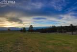 3303 Blue Heron Spring Lane - Photo 5