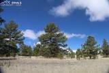 1509 Timber Mesa - Photo 11