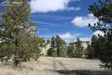 1509 Timber Mesa - Photo 15