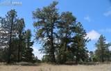 1509 Timber Mesa - Photo 23