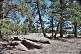 1509 Timber Mesa - Photo 5