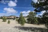 1509 Timber Mesa - Photo 8