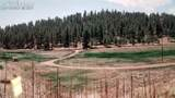 203 Apache Road - Photo 24