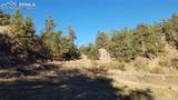 203 Apache Road - Photo 33