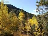 9005 Mountain Road - Photo 5