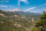 515 Old Mans Camp Trail - Photo 17