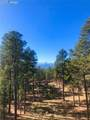 15745 Roller Coaster Road - Photo 48