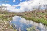 5005 Plum Creek Meadows Road - Photo 1
