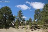 1509 Timber Mesa - Photo 2