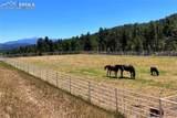 7916 County Road 92 Road - Photo 29