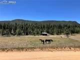 7916 County Road 92 Road - Photo 28