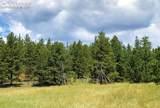 7916 County Road 92 Road - Photo 32