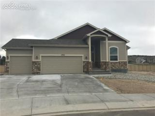 17935 Blue Opal Court, Monument, CO 80132 (#1181878) :: 8z Real Estate
