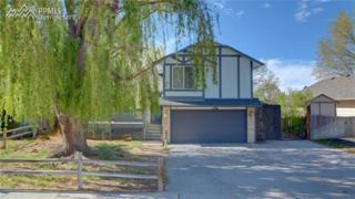 315 Dix Circle, Colorado Springs, CO 80911 (#2229060) :: 8z Real Estate