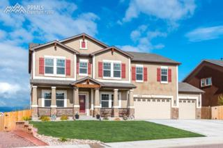 10716 Mcgahan Drive, Fountain, CO 80817 (#2230052) :: 8z Real Estate