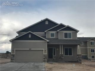 17977 Lapis Court, Monument, CO 80132 (#3112233) :: 8z Real Estate