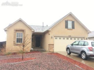 7649 Barn Owl Drive, Fountain, CO 80817 (#3112344) :: 8z Real Estate