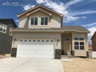 9749 Terrain Road, Fountain, CO 80817 (#3304262) :: 8z Real Estate