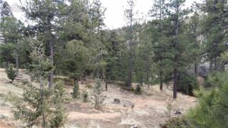 6050 Coffee Pot Road, Manitou Springs, CO 80829 (#4179321) :: Group 46:10 Colorado Springs