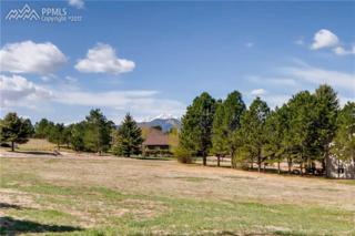 670 Portland Road, Monument, CO 80132 (#4355631) :: 8z Real Estate