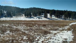 1205 Sioux Road, Florissant, CO 80816 (#4790504) :: Group 46:10 Colorado Springs