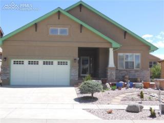 8827 Rory Creek Street, Colorado Springs, CO 80924 (#4945951) :: 8z Real Estate