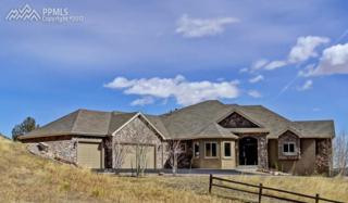 5697 Country Club Drive, Larkspur, CO 80118 (#5105702) :: Group 46:10 Colorado Springs
