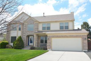 8904 Charity Drive, Colorado Springs, CO 80920 (#5157575) :: Colorado Home Finder Realty