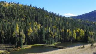 0 County 61 Road, Divide, CO 80814 (#6882411) :: Group 46:10 Colorado Springs