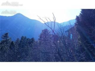 3195 Cedar Heights Drive, Colorado Springs, CO 80904 (#8365695) :: 8z Real Estate
