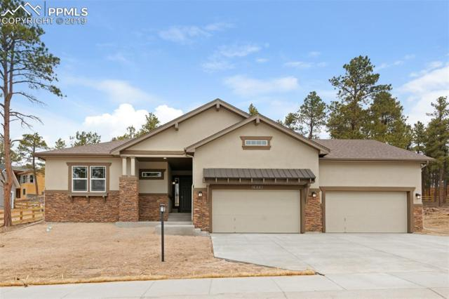1476 Catnap Lane, Colorado Springs, CO 80132 (#3245995) :: Fisk Team, RE/MAX Properties, Inc.
