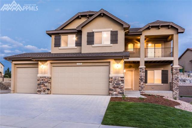 3087 Looking Glass Way, Colorado Springs, CO 80908 (#1091741) :: 8z Real Estate