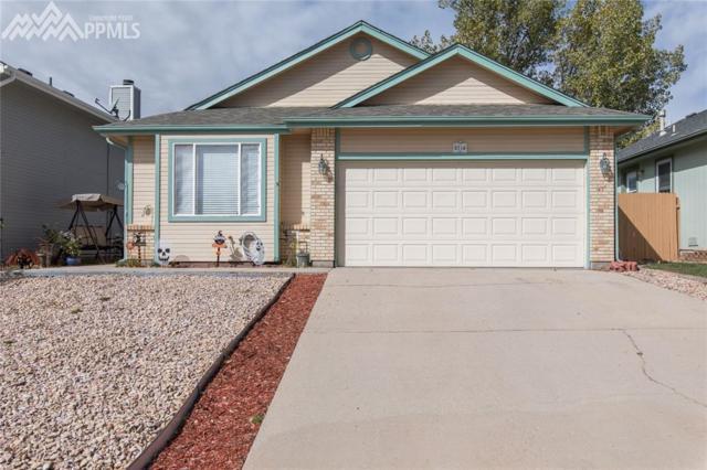 8254 Steadman Drive, Colorado Springs, CO 80920 (#1000717) :: Jason Daniels & Associates at RE/MAX Millennium