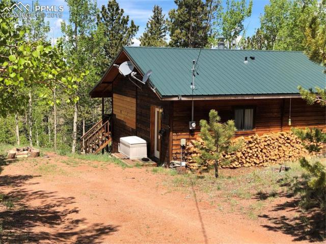 1021 May Queen Drive, Cripple Creek, CO 80813 (#1001982) :: 8z Real Estate