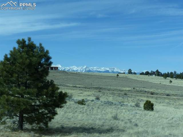 3069 Sangre Drive, Westcliffe, CO 81252 (#1002689) :: Action Team Realty