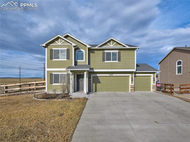 10806 Cascading Spring Circle, Peyton, CO 80831 (#1003790) :: The Daniels Team