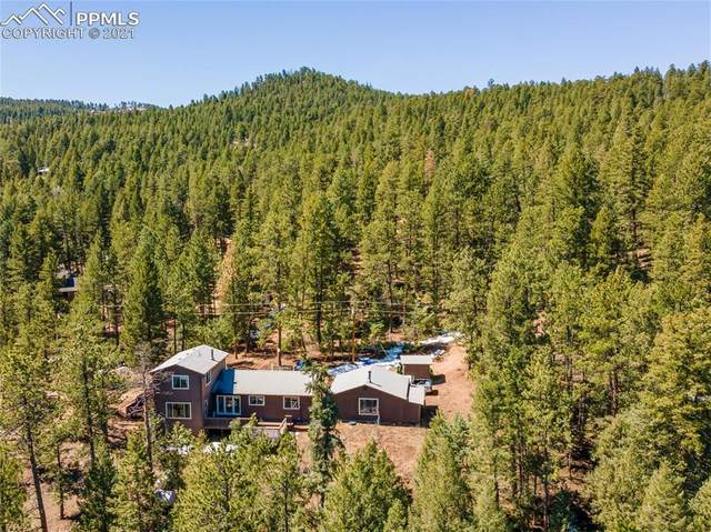 1339 Cinnamon Bear Road, Sedalia, CO 80135 (#1005517) :: The Dixon Group