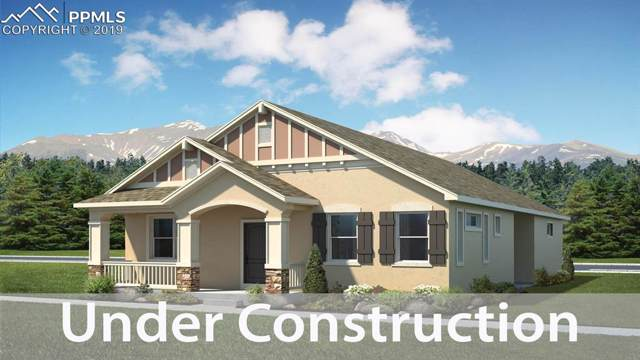 7428 Hawk Wind Boulevard, Colorado Springs, CO 80923 (#1007419) :: The Kibler Group
