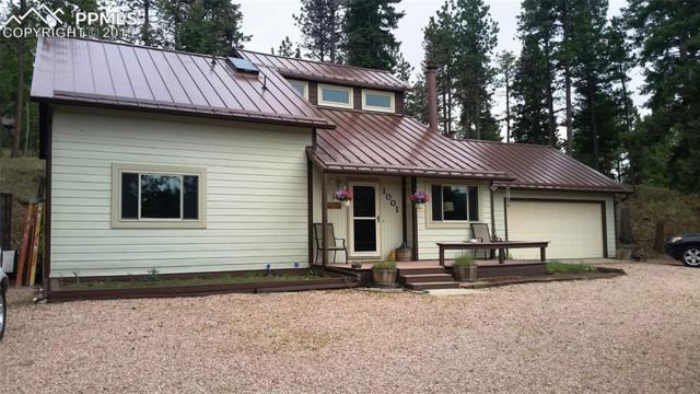 1001 Paradise Valley Drive, Woodland Park, CO 80863 (#1008708) :: Jason Daniels & Associates at RE/MAX Millennium