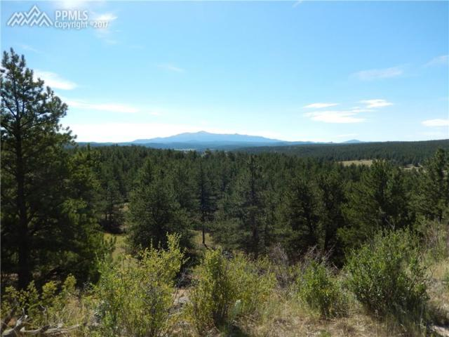 TBD Highway 24 Highway, Lake George, CO 80827 (#1011231) :: 8z Real Estate