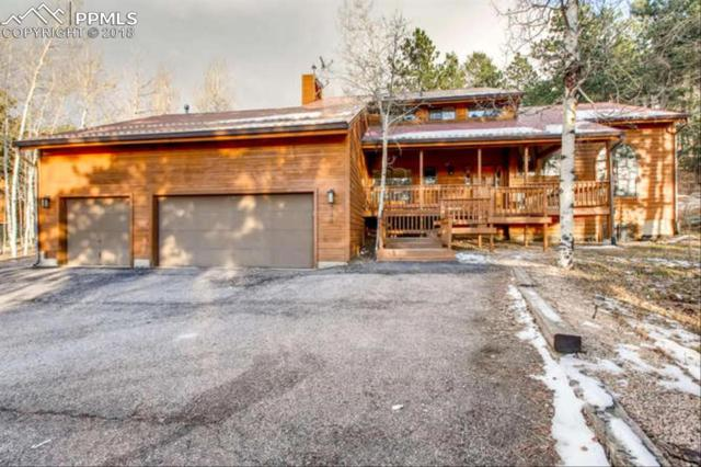 255 Morning Sun Drive, Woodland Park, CO 80863 (#1011622) :: CC Signature Group