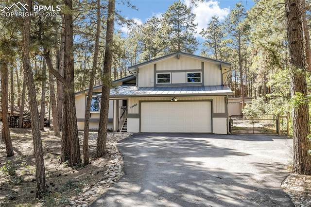 15160 Sun Hills Drive, Colorado Springs, CO 80921 (#1022869) :: 8z Real Estate