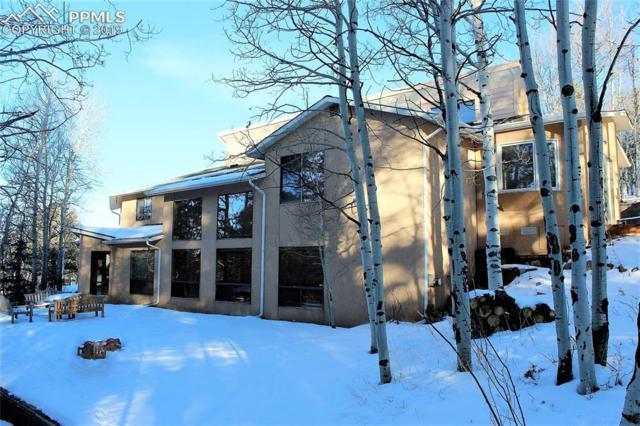 5701 Trout Creek Road, Woodland Park, CO 80863 (#1028101) :: 8z Real Estate