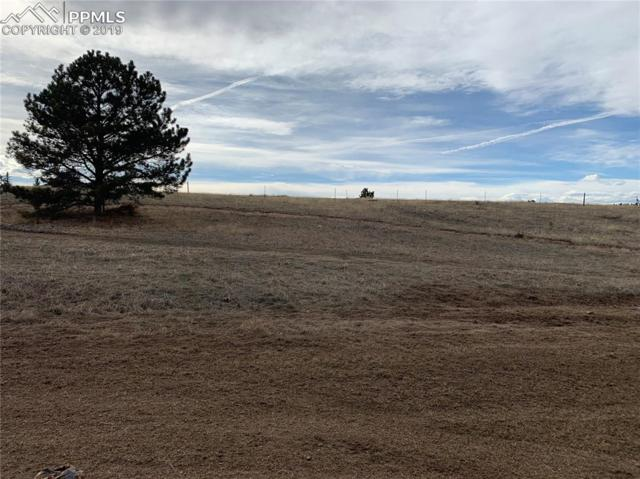 TBD Stripling Lane, Divide, CO 80814 (#1032486) :: Venterra Real Estate LLC