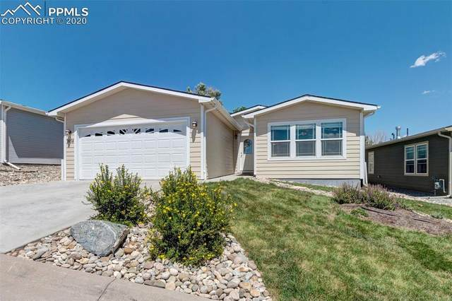 7654 Crested Jay Point, Colorado Springs, CO 80922 (#1038072) :: CC Signature Group