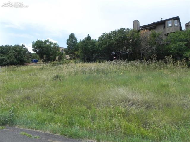 6753 Big Horn Trail, Littleton, CO 80125 (#1039125) :: 8z Real Estate